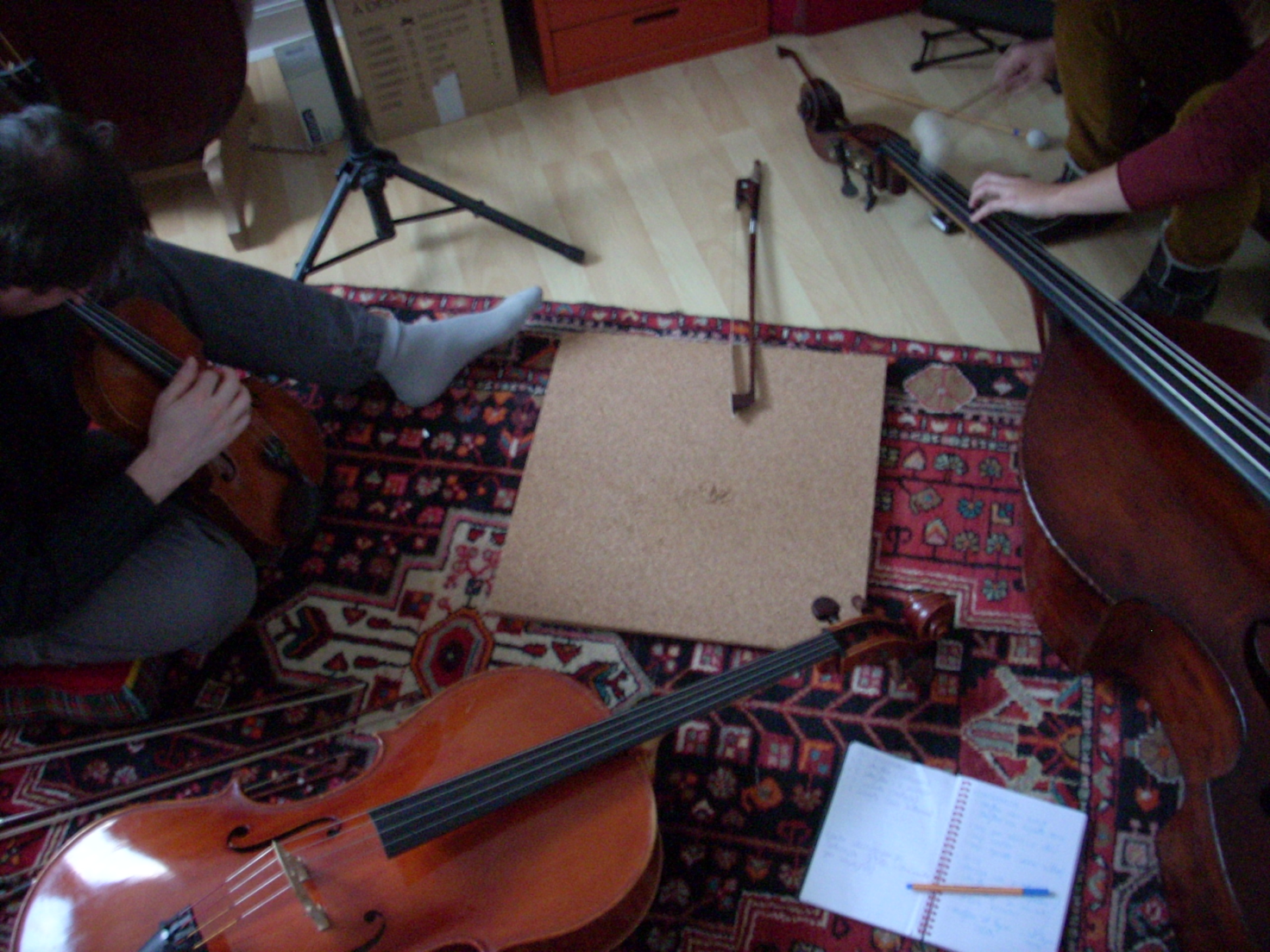 Loligo starflux in tre - Reduire la resonance d une piece ...